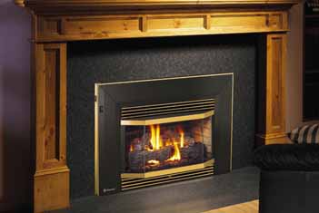 Regency Natural Gas Fireplace Inserts